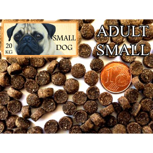 Small dog 20 kg