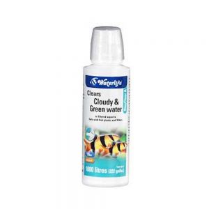 Waterlife Stay Clear 100ml