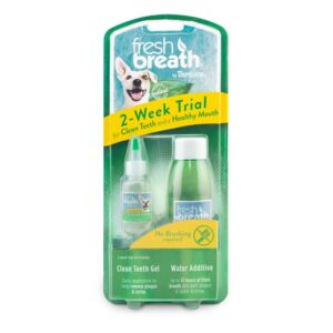 Clean Teeth Oral Care 2 Weeks Trial